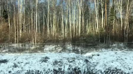 rapid transit : Forest View From Train Window Stock Footage