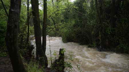 izrael : the river near banias in israel after heavy rainfall
