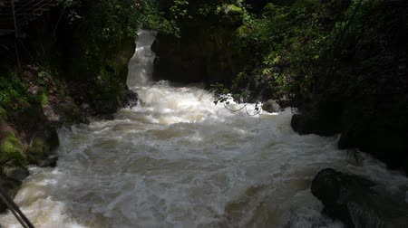 dançarinos : the river near banias in israel after heavy rainfall
