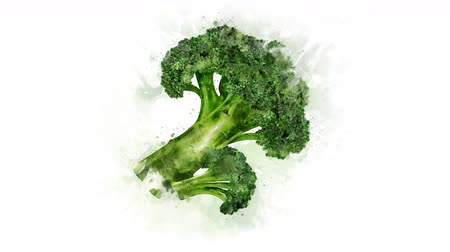 bitkisel : Broccoli on the alpha channel