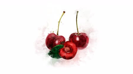 kompot : A drawing of a red Cherry appears