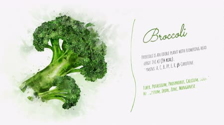 karnabahar : Ready animation about the benefits of Broccoli