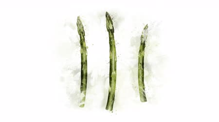 illustration and painting : Animated pattern of Asparagus on the alpha channel