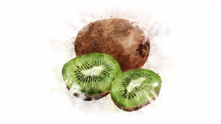 mancha : Kiwi on the alpha channel Stock Footage