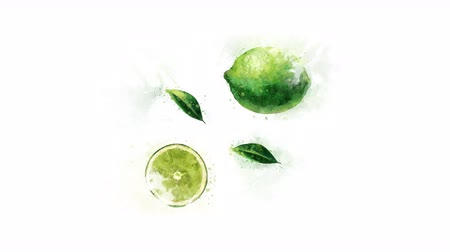 kompot : Lime painted in watercolor