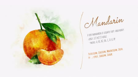 mancha : Animated information about the benefits of Mandarin Stock Footage