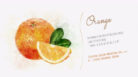 kompot : Orange and its beneficial properties