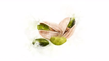 vegetariáni : Pistachio Illustration for the overlay