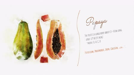 acuarela : Ingredientes saludables de la papaya