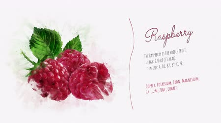 kompot : Card about the energy value of Raspberry Wideo