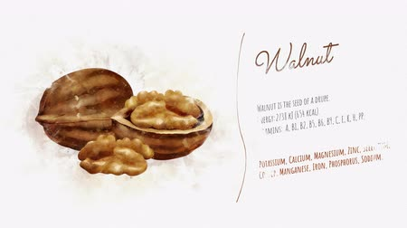 beautifully : A beautifully animated card with information about Walnut