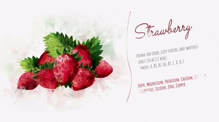 акварель : Slide for presentation of Strawberry Стоковые видеозаписи