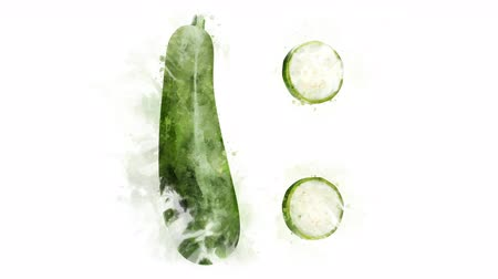cuketa : Watercolor Zucchini picture appearance