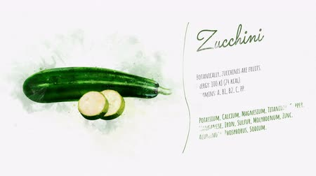 beautifully : A beautifully animated card with information about Zucchini Stock Footage