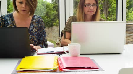 surfing the net : Businesswomen working from home Stock Footage