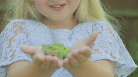 csodálkozás : Pre teen caucasian girl holding a white lipped tree frog in her hands  in the garden