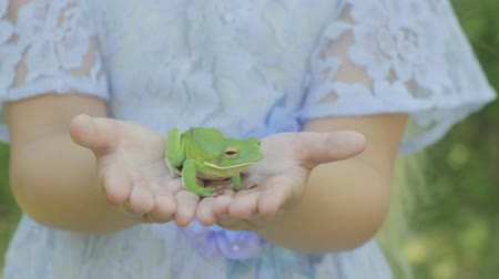csodálkozás : Pre teen caucasian girl holding a white lipped tree frog in her hands Stock mozgókép
