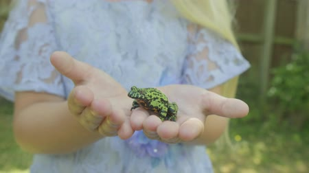csodálkozás : Pre teen caucasian girl holding a fire bellied toad frog in her hands Stock mozgókép