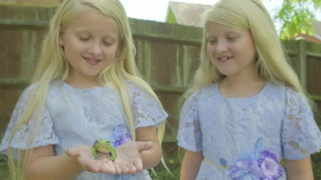 csodálkozás : Pre teen caucasian girl holding a white lipped tree frog next to her twin sister in her hands