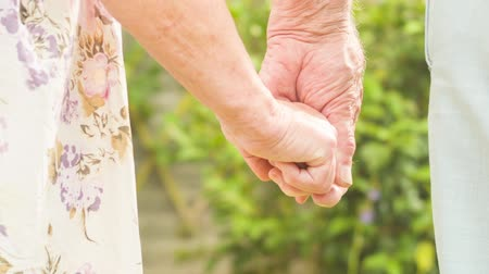 evli : Low angle view of an affectionate Senior Caucasian couple holding hands in their garden Stok Video