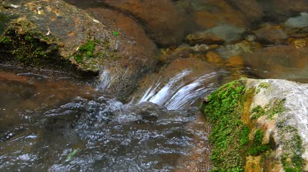 ribeiro : Mountain Brook flowing among stones. Footage 1920x1080