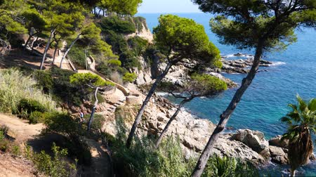 zátoka : Scenic view of the Mediterranean coastline near the town of Lloret de Mar with tropical bushes and palm trees