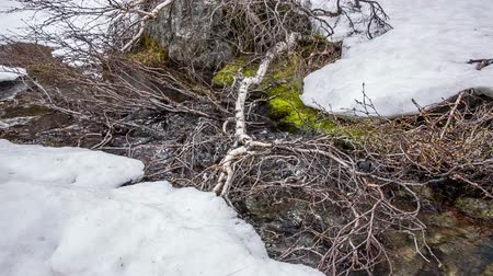 crevice : Stream from the glacier