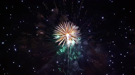 ノエル : Colorful fireworks exploding in the night sky. Celebrations and events in bright colors.