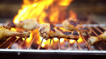 fogueira : Grilled chicken BBQ cooked with a fire close-up