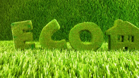 ekologia : Little Eco House on the green grass. Eco concept background. Wideo