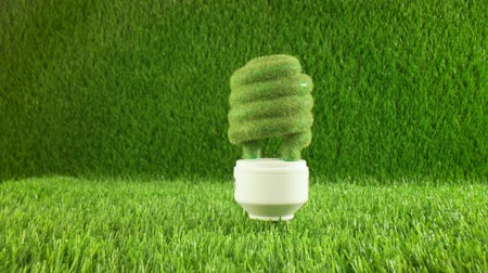 再利用可能な : Eco light bulb in green grass. Eco concept background 動画素材