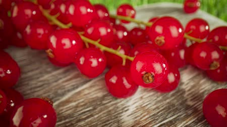 agrest : Super close macro of a redcurrants on a wooden table.