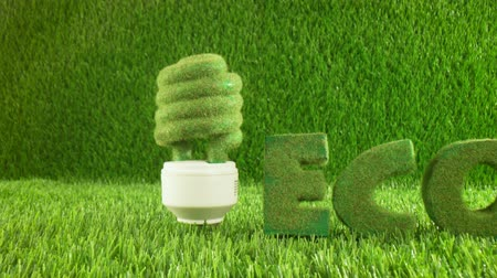 odpowiedzialność : Eco light bulb in green grass. Eco concept background Wideo