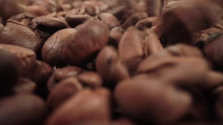 kahve çekirdeği : Ñoffee beans are falling close-up Stok Video