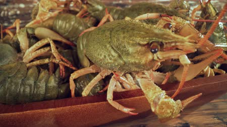 crab eating : Live crayfish on a wooden table close-up
