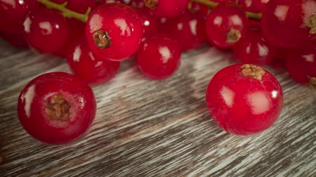 césar : Super close macro of a redcurrants on a wooden table.