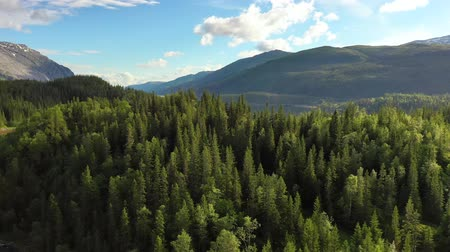 escandinavo : Aerial footage Beautiful Nature Norway