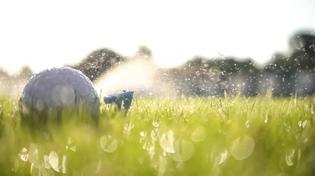 golfbaan : Unsuccessful Golf club hits a golf ball in a super slow motion. Drops of morning dew and grass particles rise into the air after the impact.