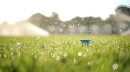 тройник : Golf club hits a golf ball in a super slow motion. Drops of morning dew and grass particles rise into the air after the impact.