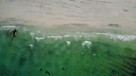 surfer paradise : Abstract wave sea beach on top view. Norway Lofoten Beach Stock Footage