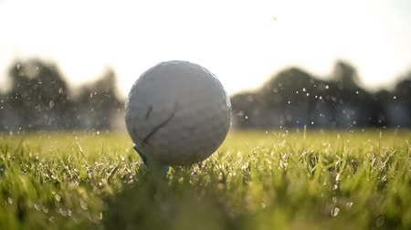 тройник : Unsuccessful Golf club hits a golf ball in a super slow motion. Drops of morning dew and grass particles rise into the air after the impact.