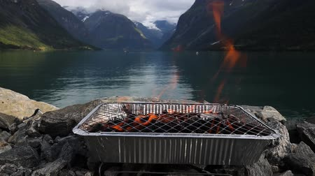 charred : Disposable barbecue grid. Beautiful Nature Norway natural landscape. Stock Footage