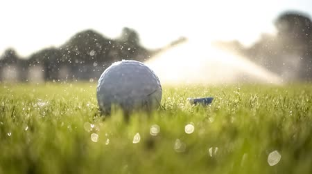 t şeklinde : Unsuccessful Golf club hits a golf ball in a super slow motion. Drops of morning dew and grass particles rise into the air after the impact.