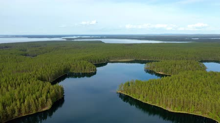 finlandiya : Aerial View of the Lake and Forest in Finland. Beautiful nature of Finland.