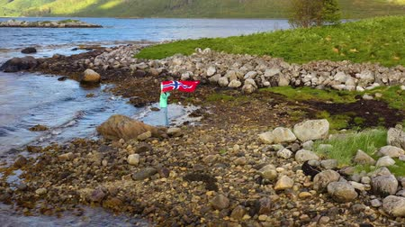 гражданство : Woman with a waving flag of Norway on the background of nature Стоковые видеозаписи