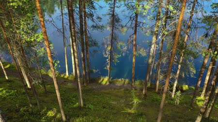 escandinavo : Aerial View of the Lake and Forest in Finland. Beautiful nature of Finland.