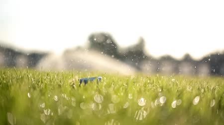 Golf club hits a golf ball in a super slow motion. Drops of morning dew and grass particles rise into the air after the impact.