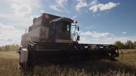 овес : Ripe oats at agriculture autumn field with industrial farm combine harvester. Professional harvesting technology for manufacturing nature food, machine harvest at countryside in sunlights daytime