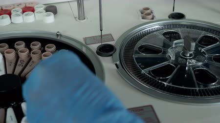 Nurse hands in gloves put blood tubes into spin centrifuge robot for medical research. Clinic biochemistry technology equipment for analysis in biomedical laboratory. Centrifugal apparatus in lab