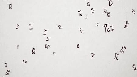 aflição : Hand Drawn Letter X Flying Over Old White Paper. High Quality Animation. Seamless loop, 1080p, 60fps
